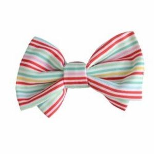 Pet bow tie rainbow 🌈 striped collar slide